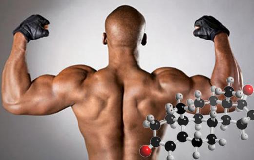 Бустеры тестостерона: научный взгляд на эффективность