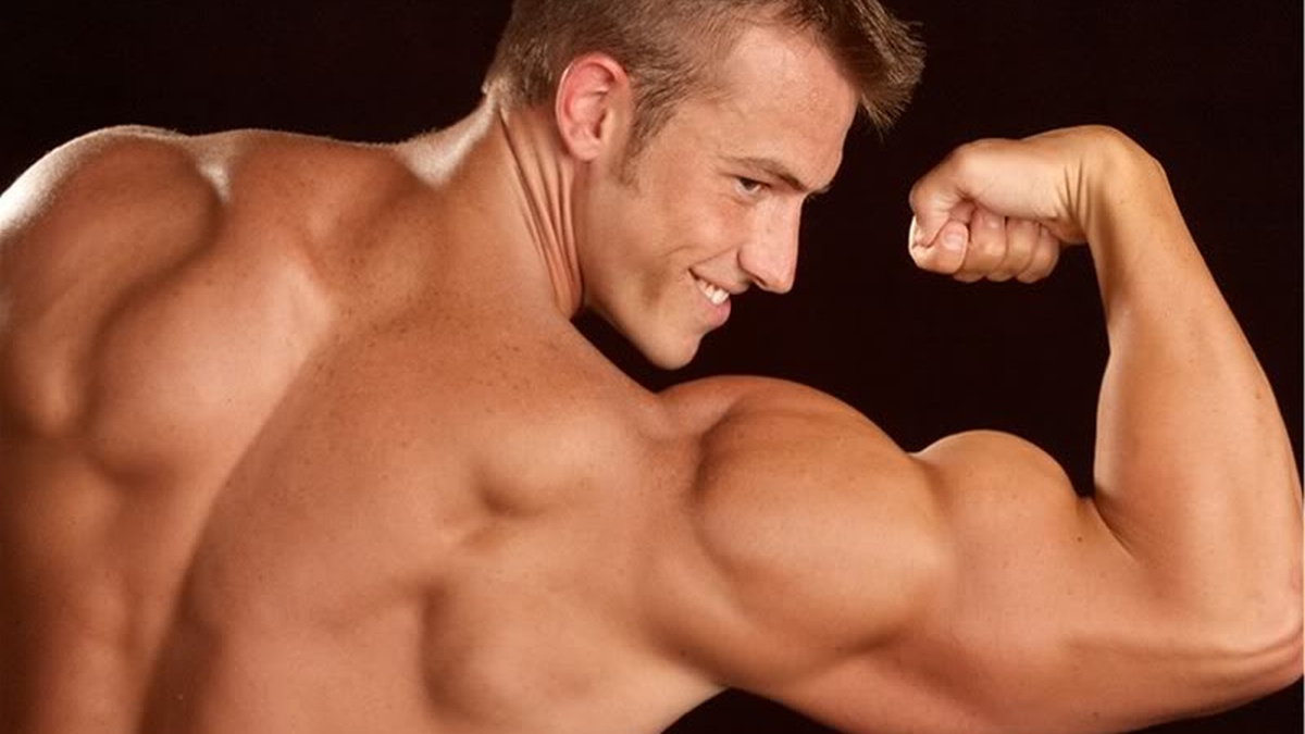 Сколько мышц вырастет без стероидов?